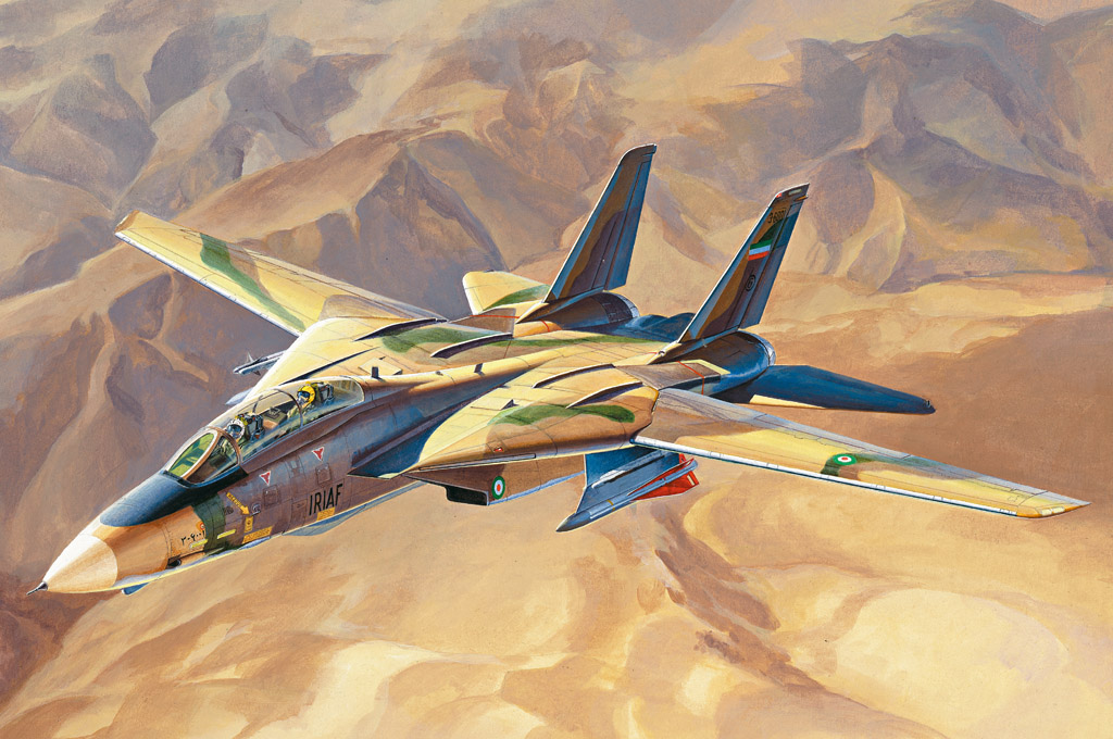Hobby Boss ?Persian Cat? F-14A TomCat - IRIAF