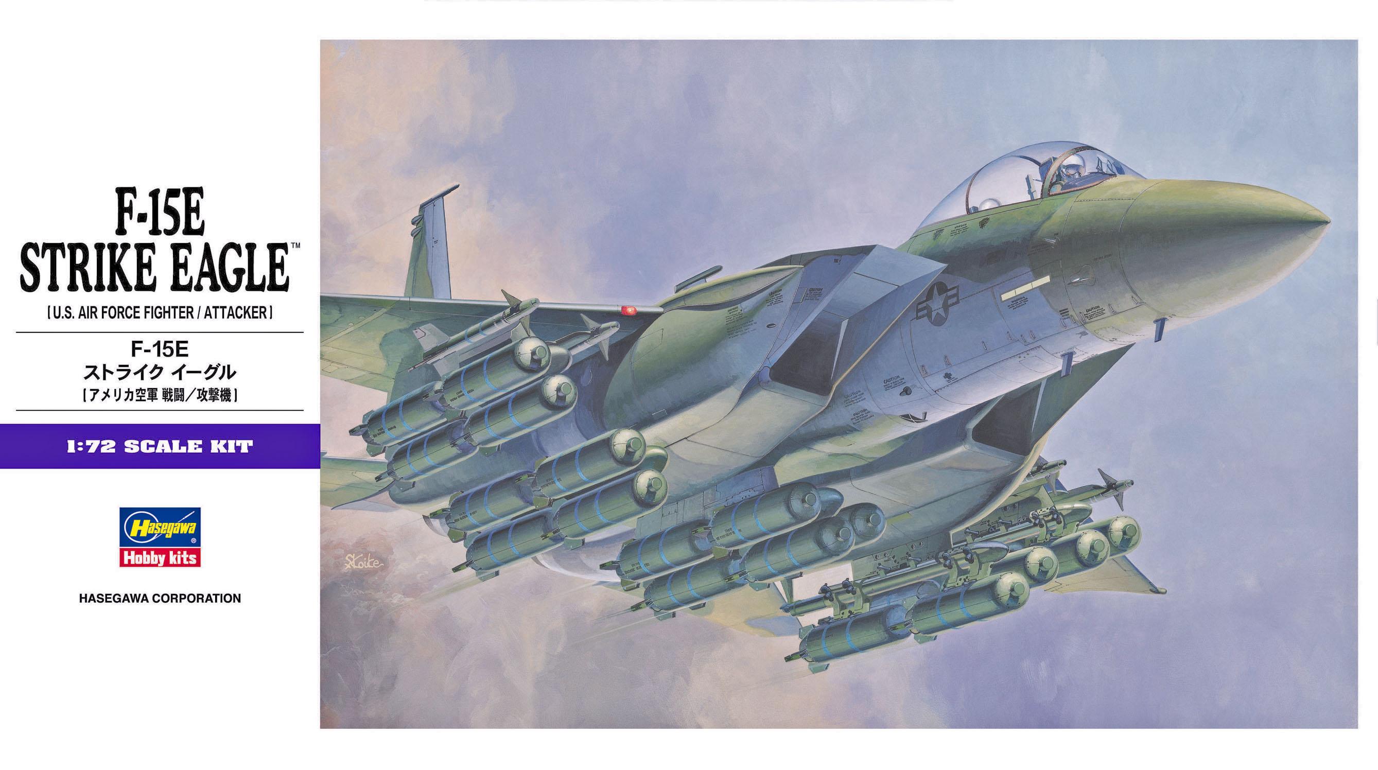 Hasegawa F-15E Strike Eagle E10