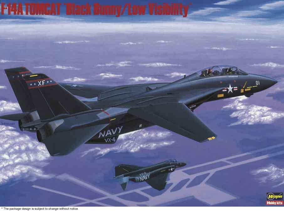 """Hasegawa 1/72 F-14A Tomcat """"Black Bunny"""""""