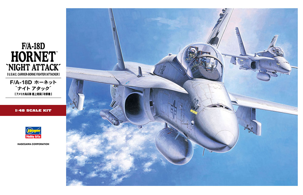Hasegawa 1/48 F-18D Hornet Night Attack PT3