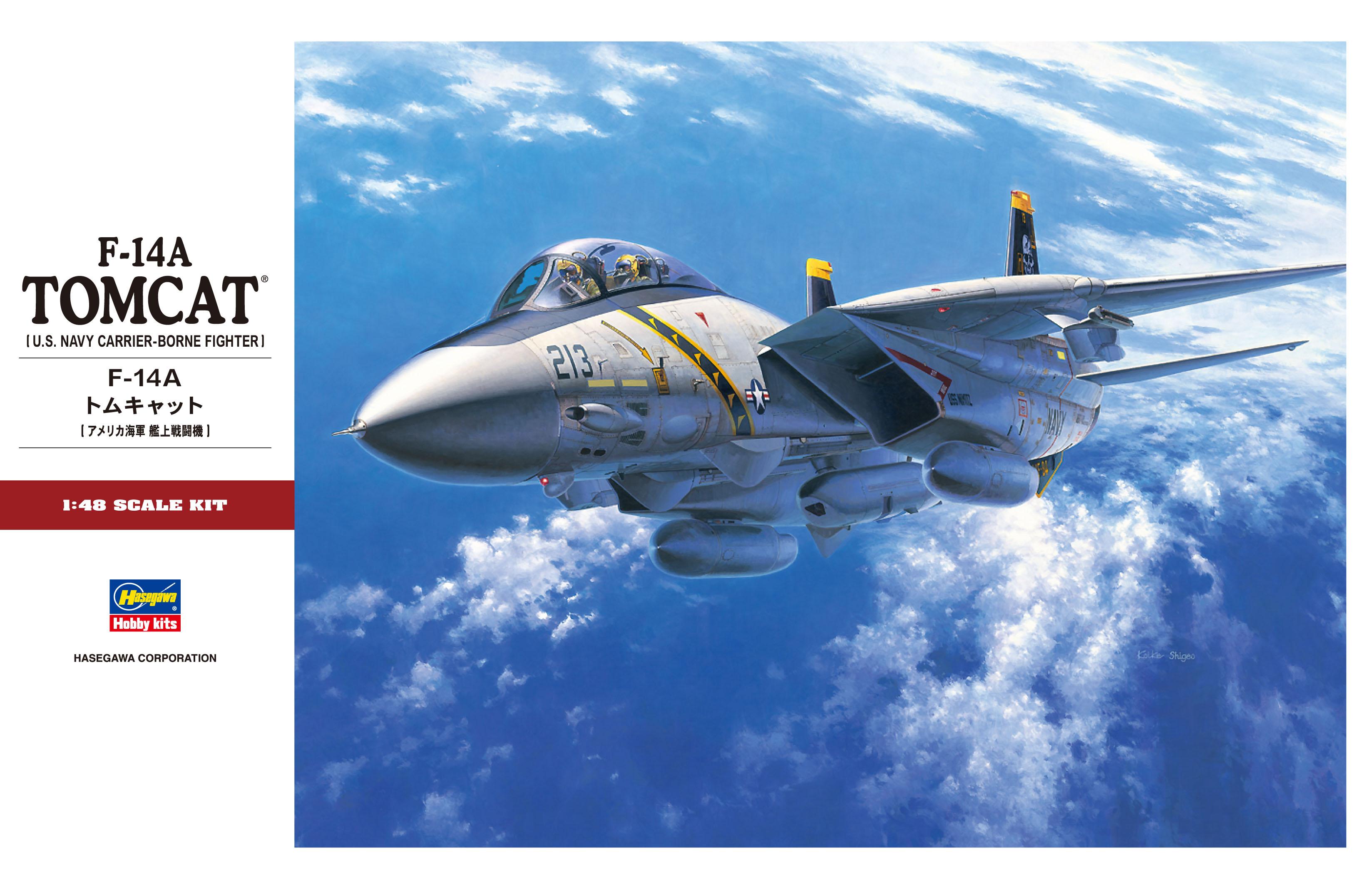 Hasegawa 1/48 F-14A Tomcat