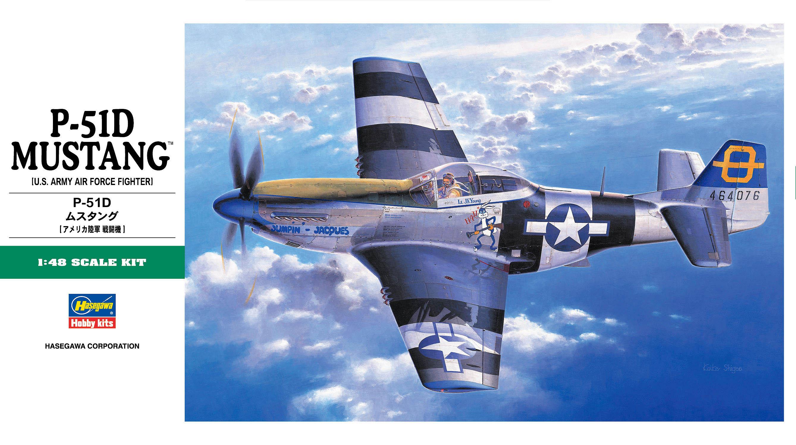 Hasegawa 1/48 P-51D Mustang JT30