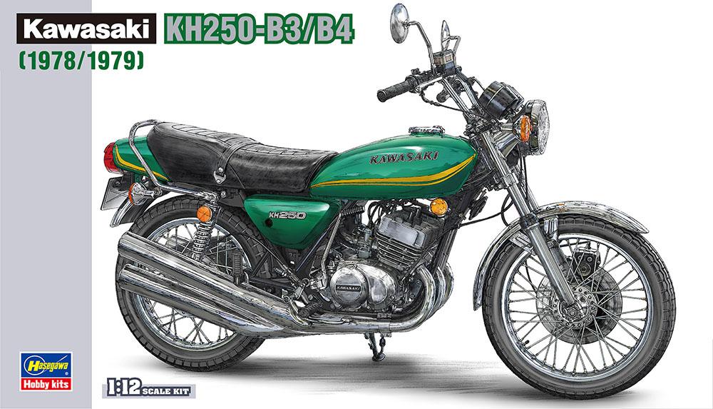 Hasegawa 1/12 Kawasaki Kh250-B3/B4 (BK8)