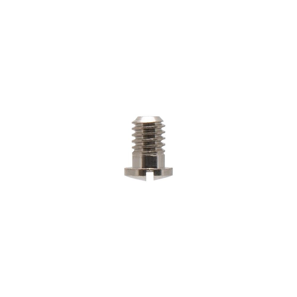 IWATA Main Body Ring Screw TRN1/2