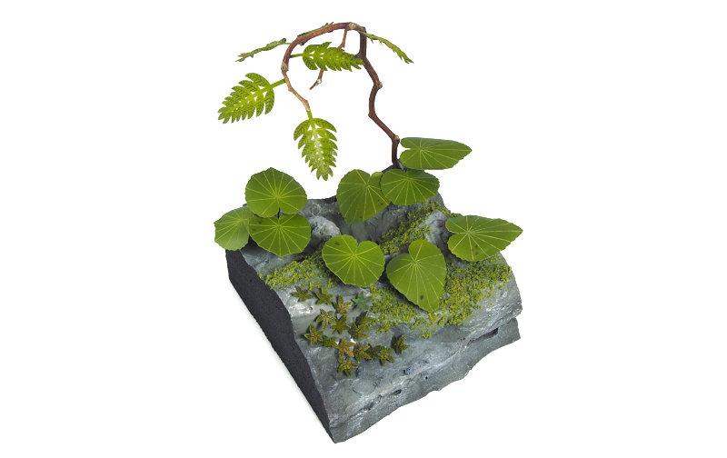 Matho 1/35 Jungle Plants C