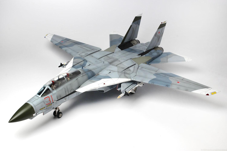 "Platz x Italeri 1/48 F-14A TOMCAT UNITED STATES NAVY FIGHTER WEAPONS SCHOOL ""TOP GUN"""