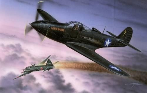 Special Hobby 1/32 P-39Q Makin Airacobras HI-TECH