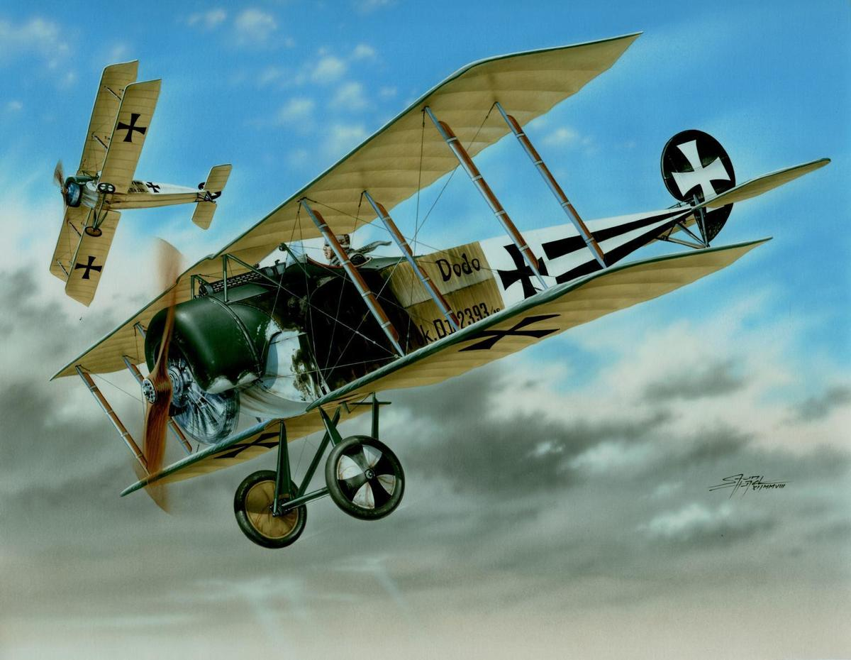 Special Hobby 1/48 Fokker D.ll Black & White Tails