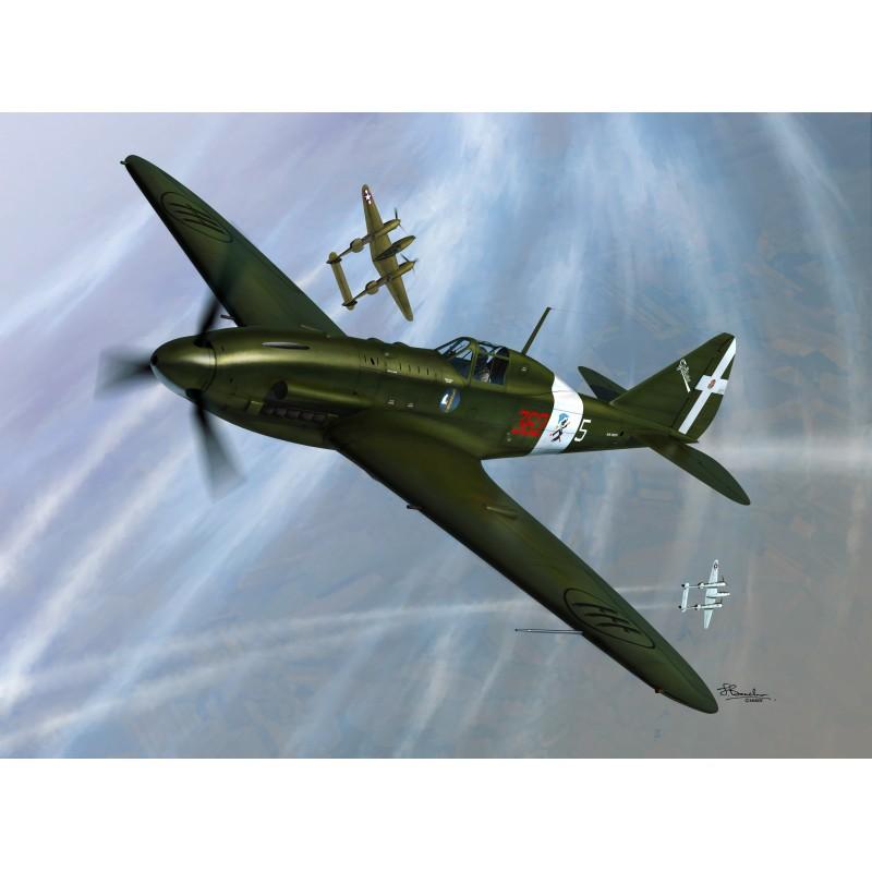 Sword Models 1/48 Re.2005 Sagittario, Aircraft