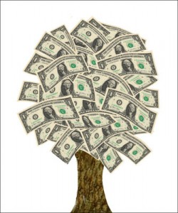 _000_A_Moneytree4