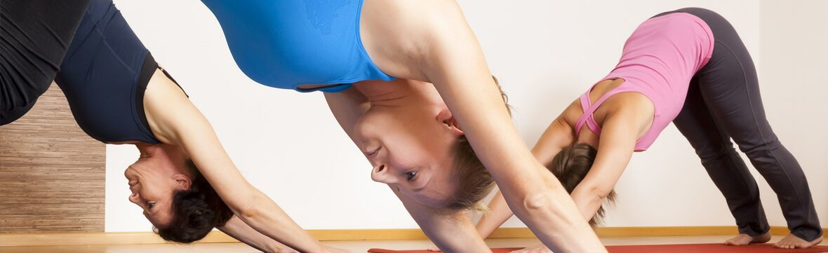 Banner   dynamic hatha yoga