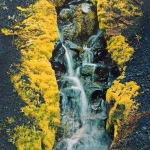 Eliot Porter, Small Stream In Cinders, Skeljafell