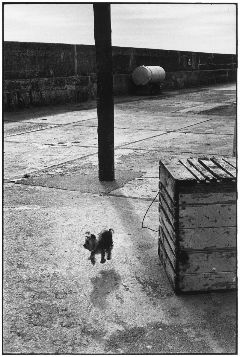 Ballycotton, Eire, 1968