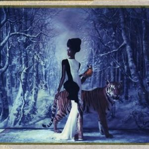 cathleen-naundorf_l-arche-de-noe-xxxvii-paris-stephane-rolland-haute-couture-2012