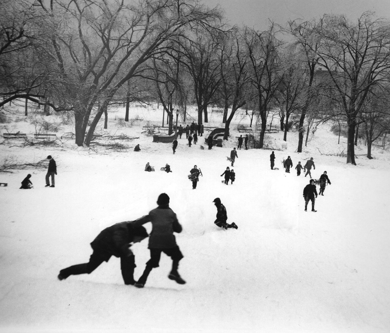 Park Scene, Boys Sleding, Winter