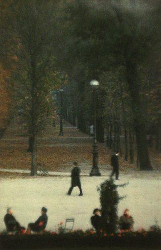 Bois, Paris