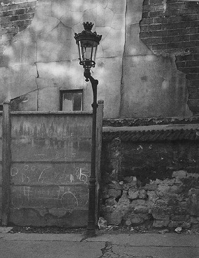 Left Bank Street Lamp, Paris