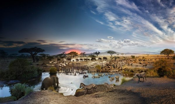 Serengeti National Park, Tanzania, Day to Night