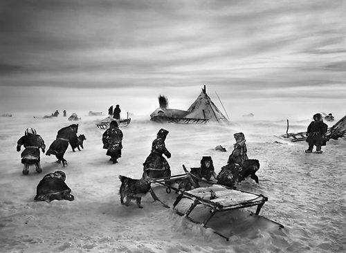 Nenet Nomads Camp, Siberia, Russia