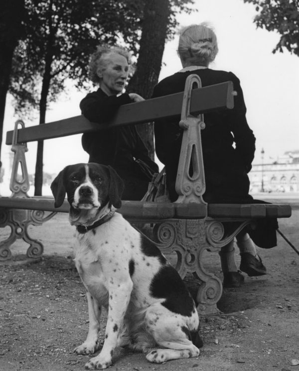 2 femmes et chien (Two women and dog)