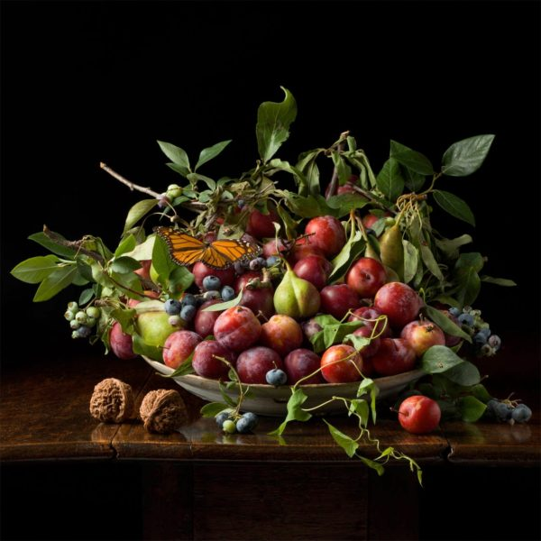 Plums and Chinese Walnuts, After G.G.