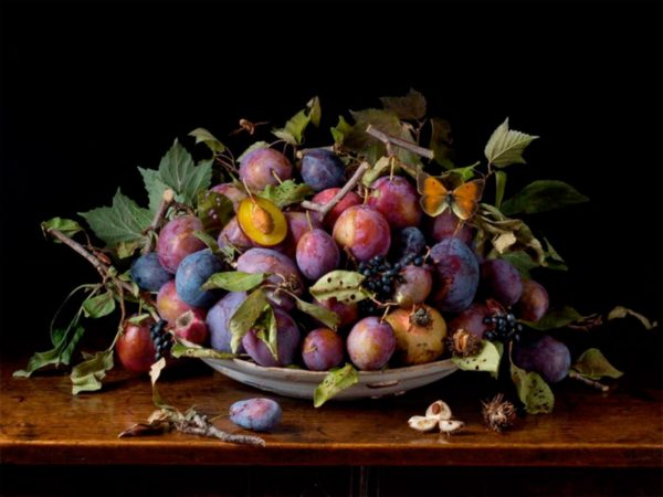 Italian Plums, After G.G.