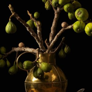 Figs, After G.F.