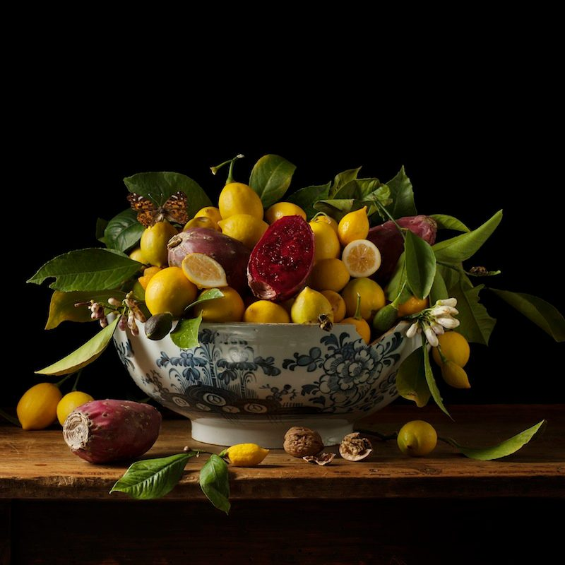 Lemons and Prickly Pears