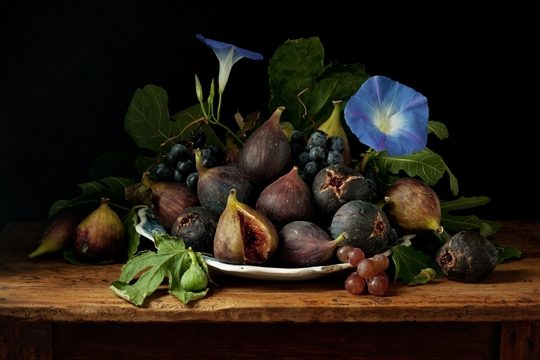 Figs and Morning Glories, After G.G.