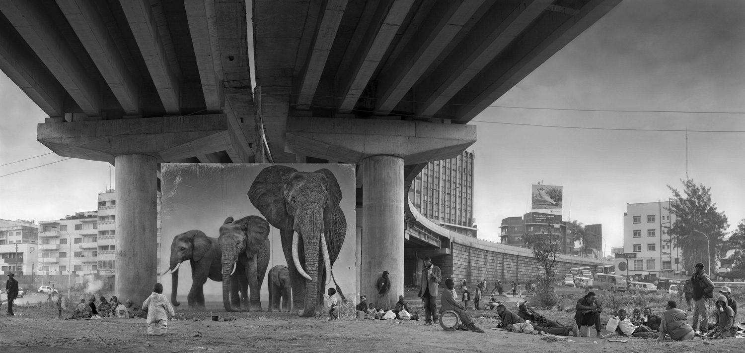 Underpass with Elephants (Lean Back, Your Life is on Track)