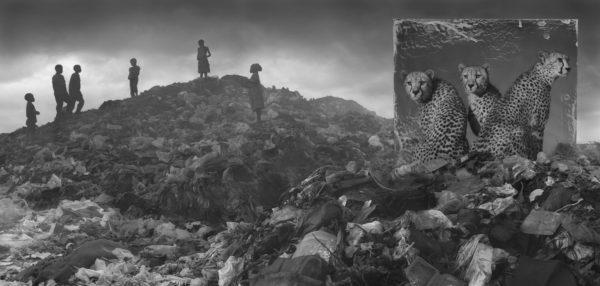 Wasteland with Cheetahs and Children
