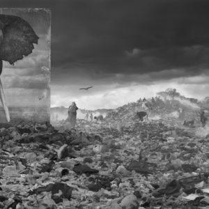 Wasteland with Elephant
