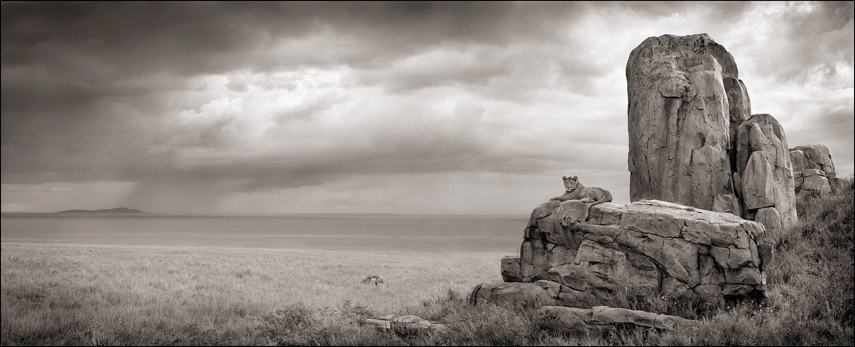 Lion with Monolith, Serengeti