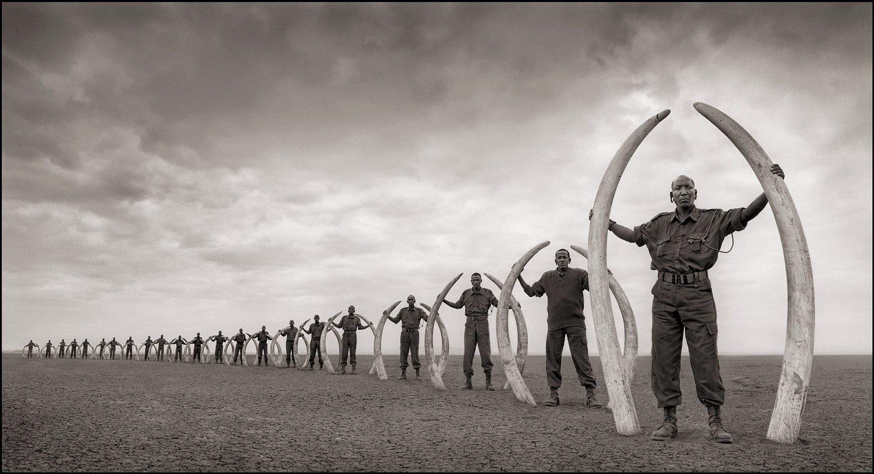 Line of Rangers with Tusks of Killed Elephants, Amboseli