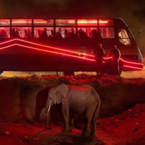 Bus Station with Elephant and Red Bus