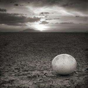 Abandoned Ostrich Egg, Amboseli
