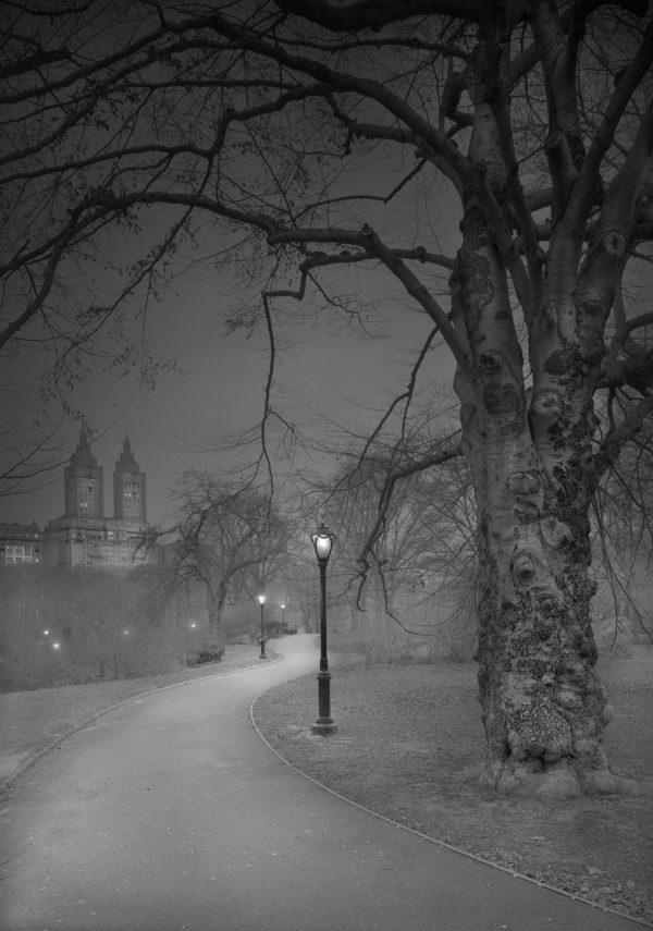 """Deep In A Dream - Central Park"" - West Side Path & San Remo - Pre-Dawn"