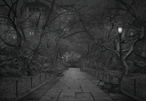 Deep In A Dream - Central Park - Private Gardens