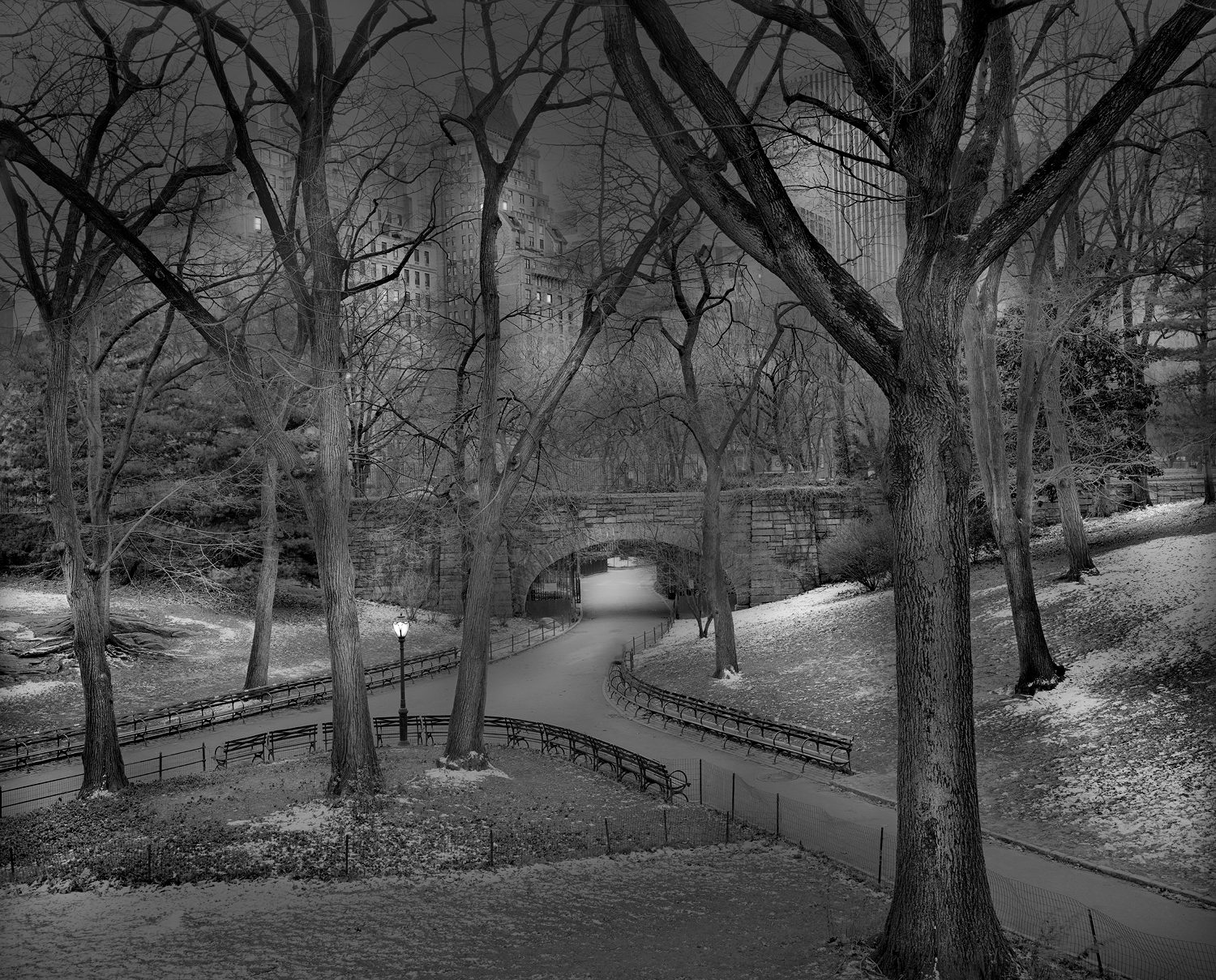 Deep In A Dream - Central Park - January Freeze