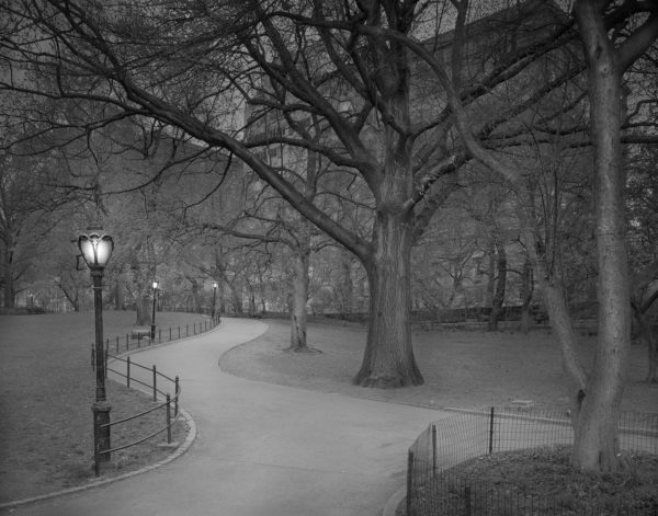 Deep In A Dream - Central Park - East Side Exit