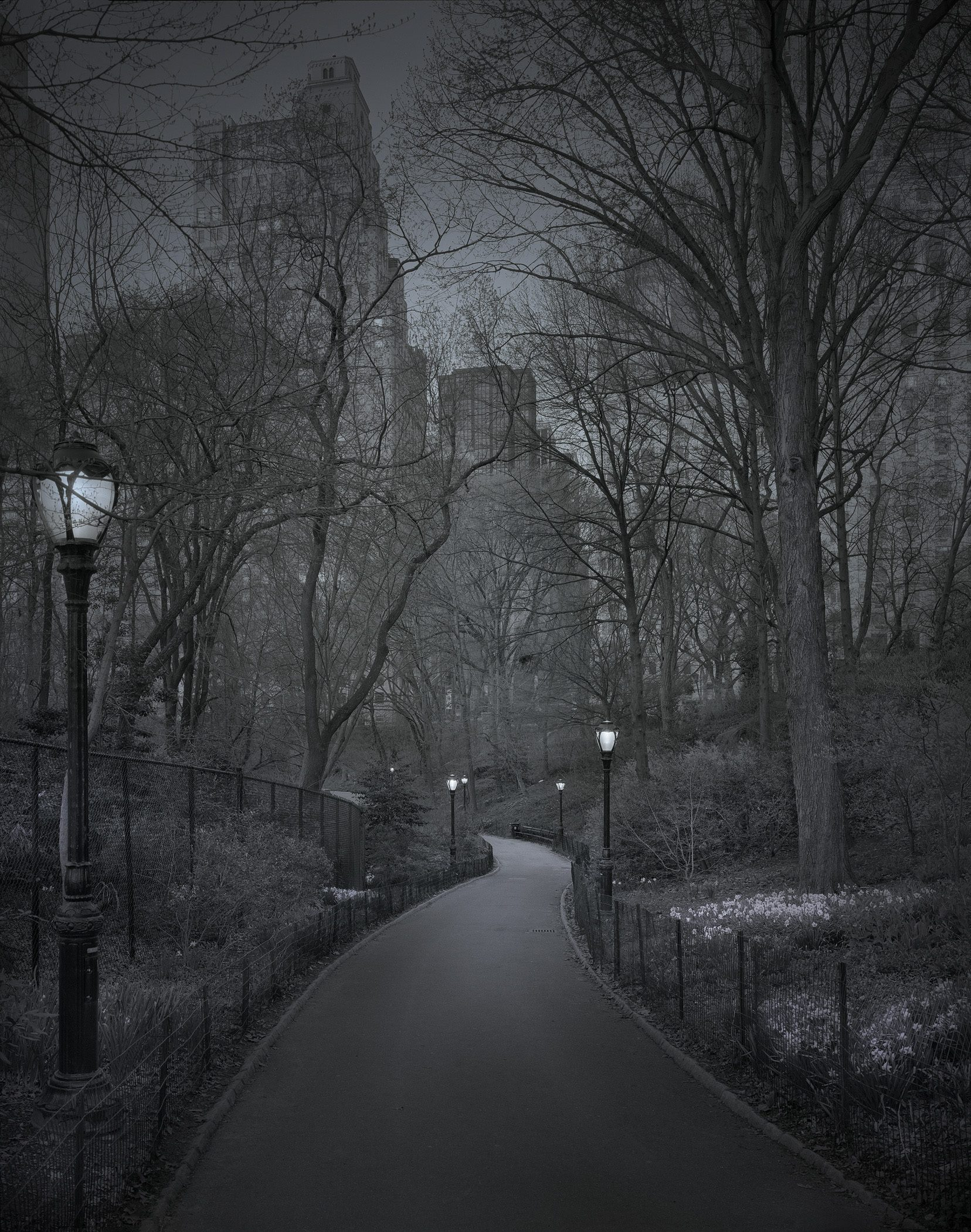 "Deep In A Dream - Central Park - Central Park ""South Path"""