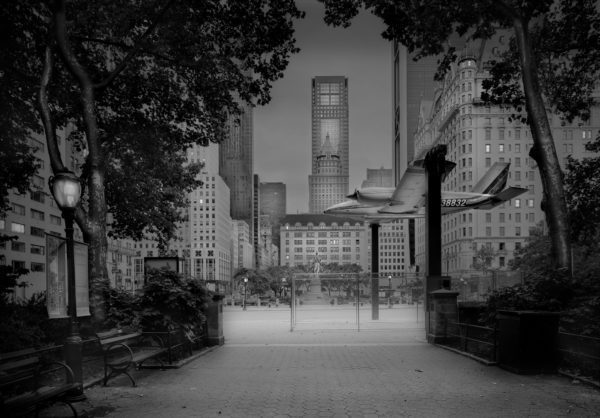 Deep In A Dream - Central Park - Airplane Installation