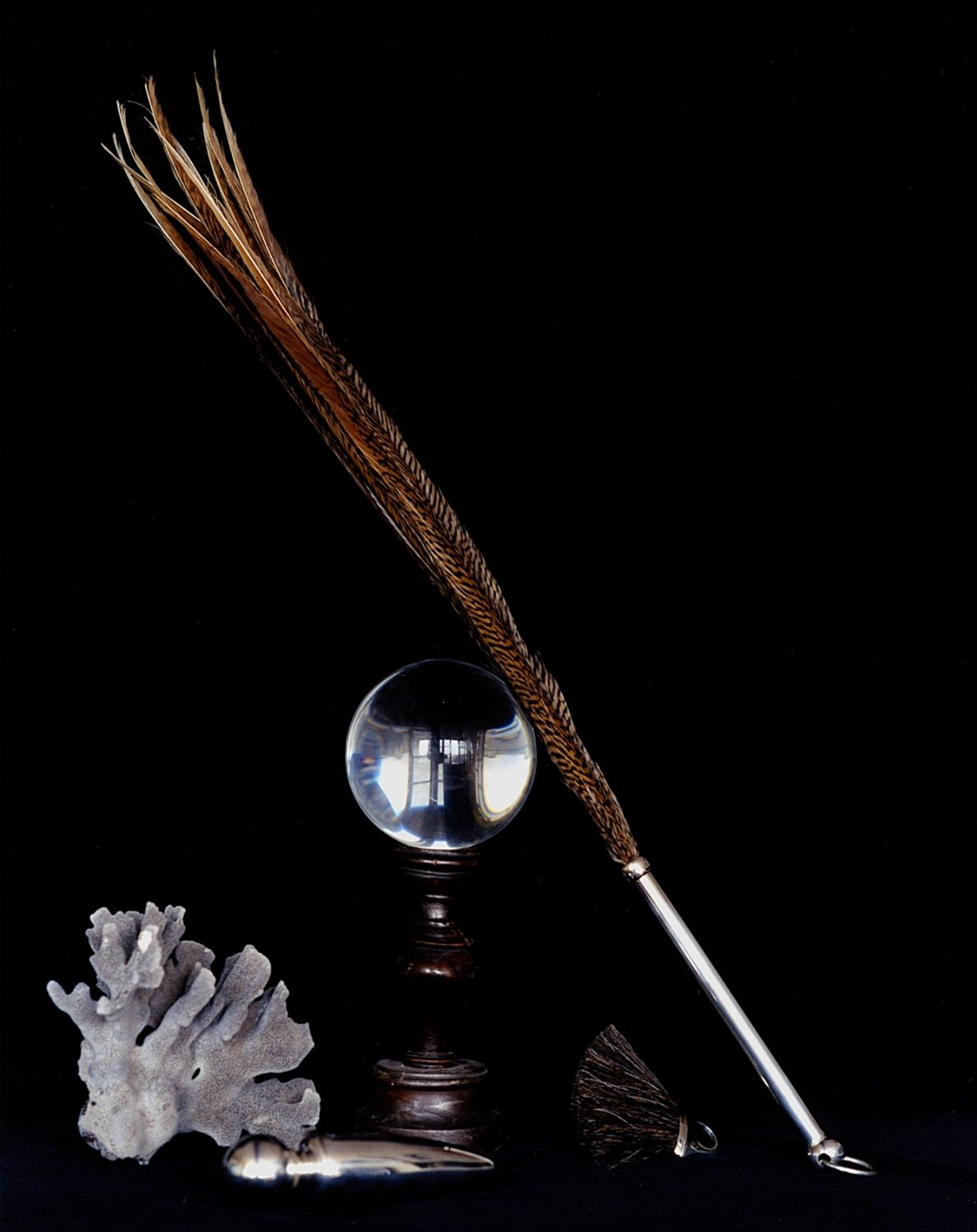Still life with a long feather