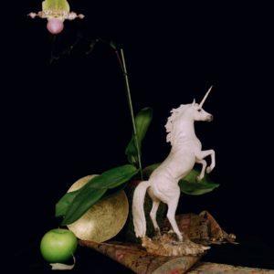 Still life with a unicorn