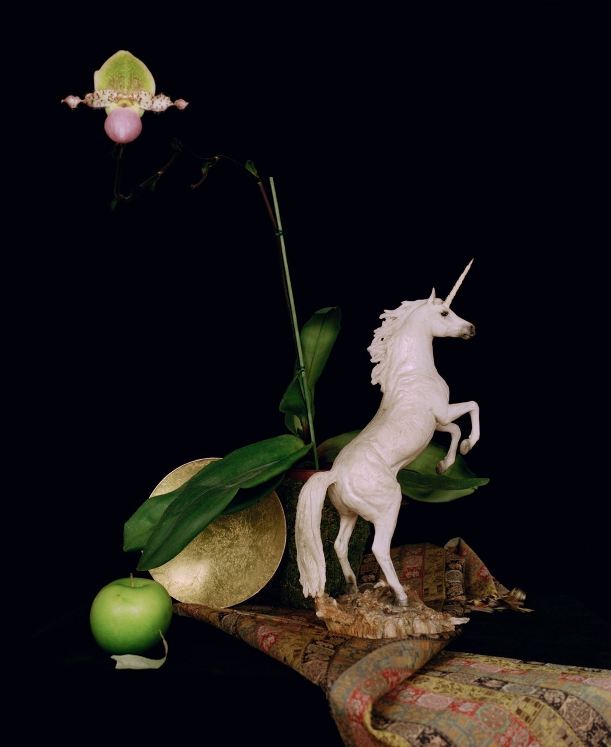 Still life with a unicorn