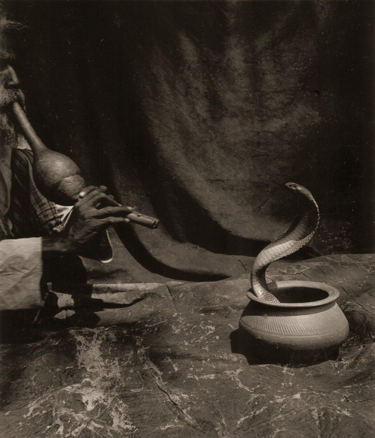 Bharat Tasvir (Snake Charmer)
