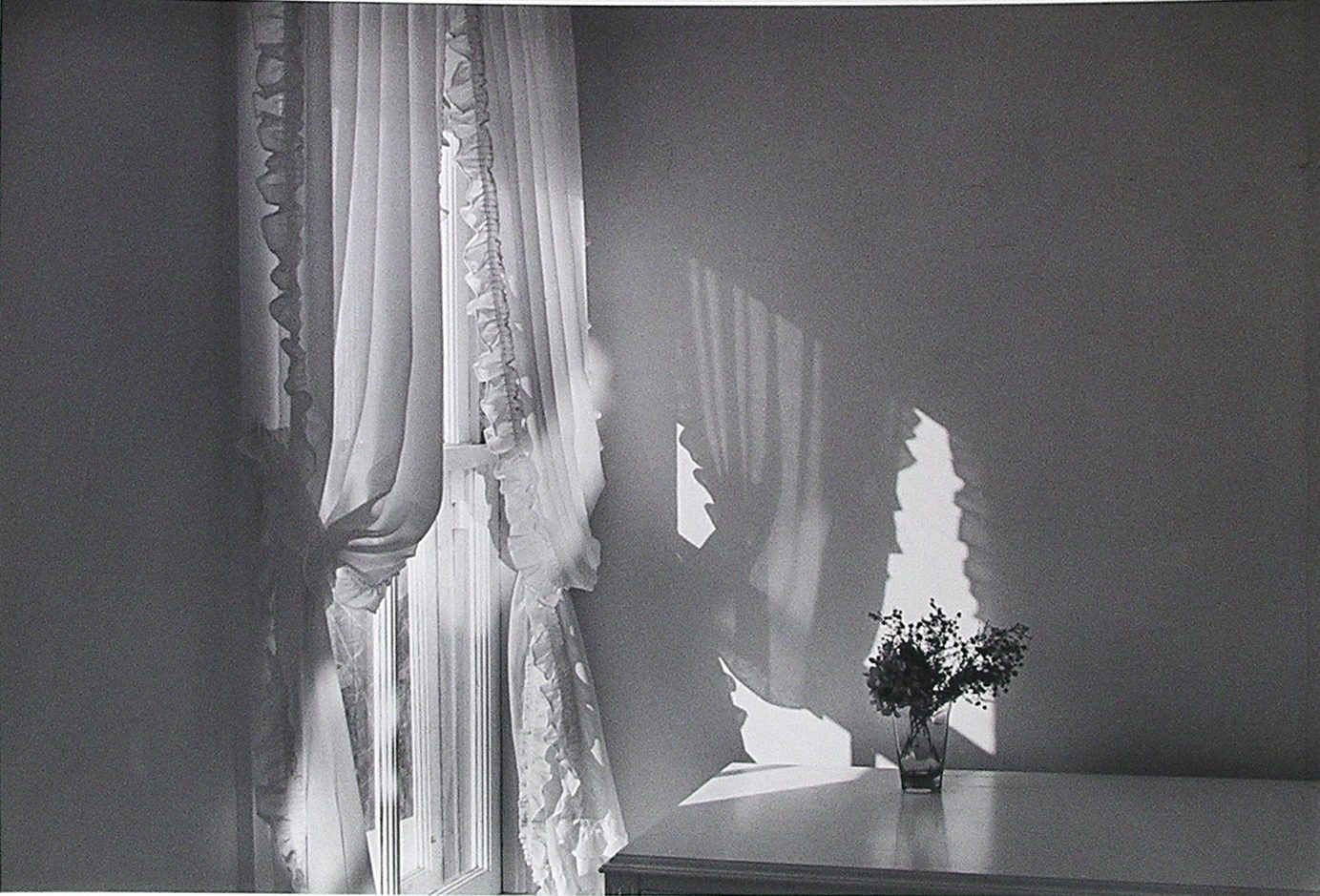 Flower on Table next to Window on Left with Curtain