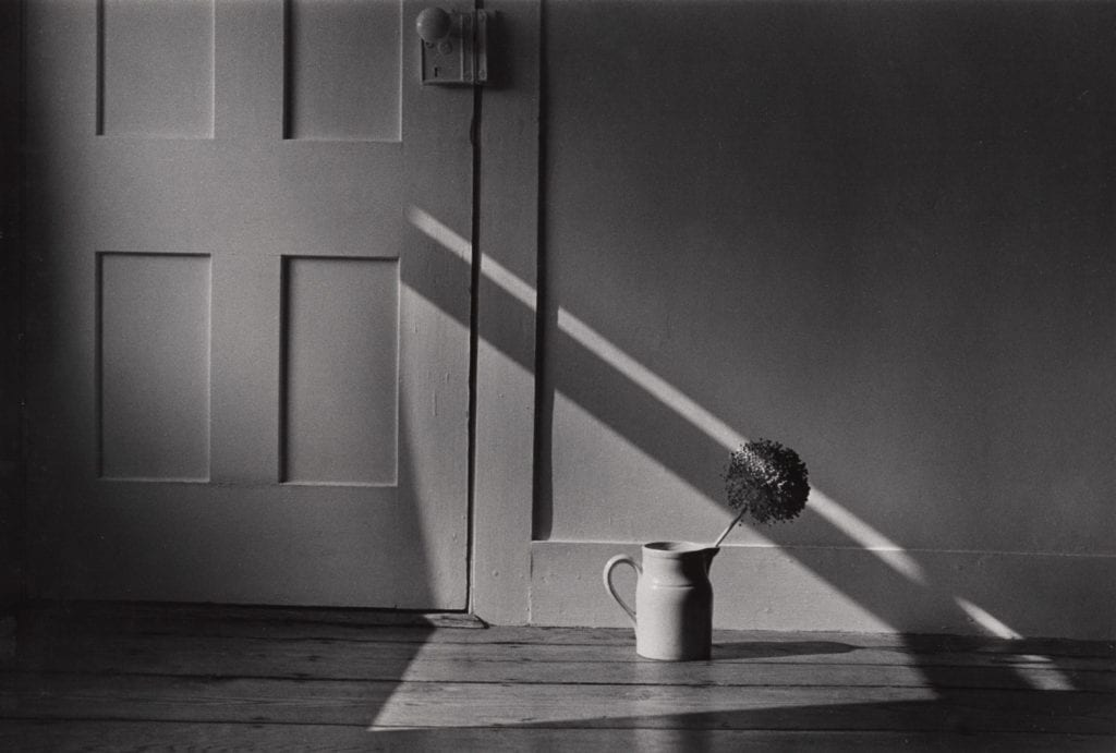 Flower in Pitcher on Floor with Door