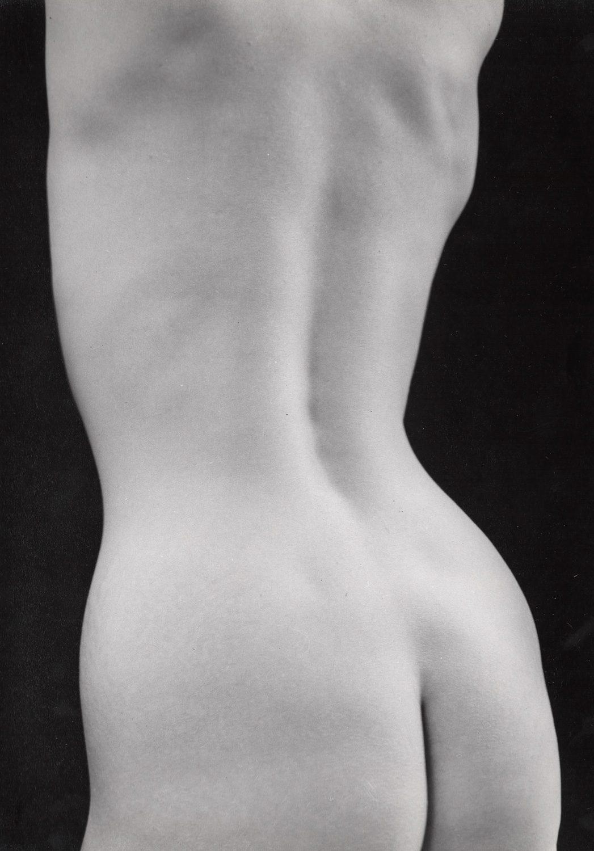 Untitled (Nude torso back straight)