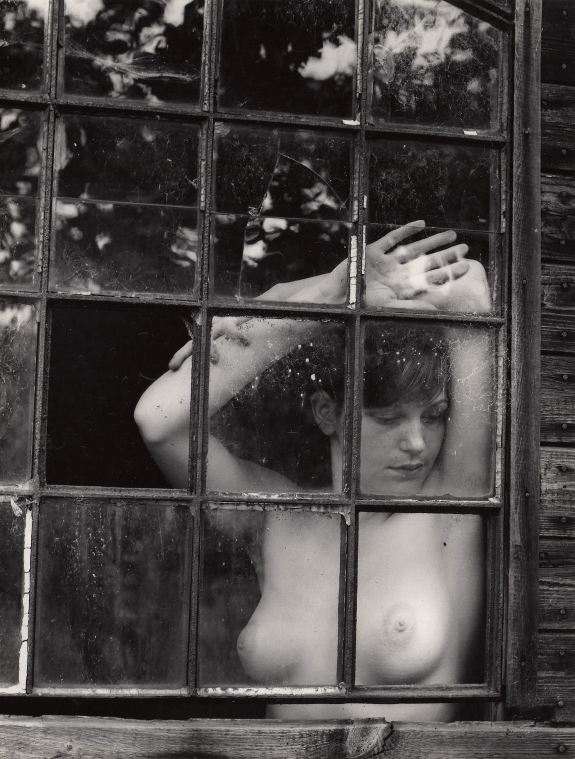 Untitled (Nude looking out of the window)